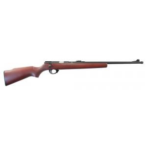 Винтовка Armscor M14 (.22LR)